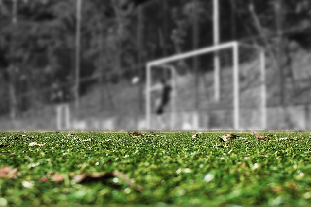 O czym koniecznie powinno się pamiętać o piłkochwytach?